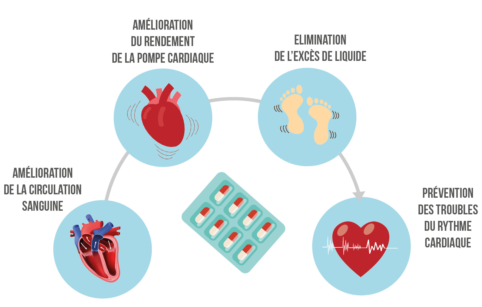 amelioration de la circulation sanguine